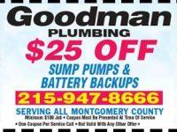 coupons04-300x217